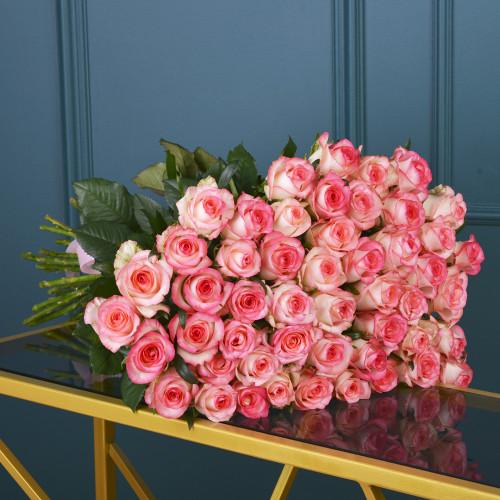 101 Малиновая Роза(розы Premium 60см)