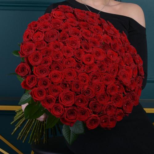 101 Красная роза (розы Premium 60см)