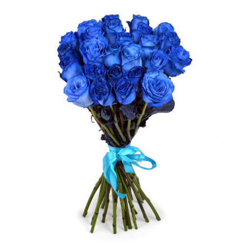 Букет из 25 синих роз Эквадор (Premium 60см)