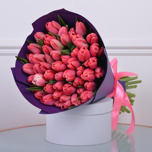 Букет из 51 бело-розового тюльпана (Premium)