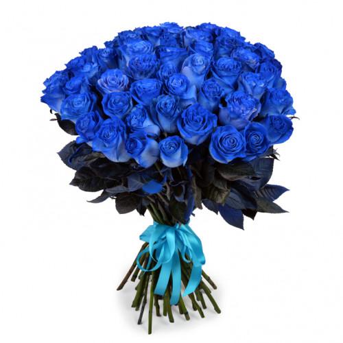 Букет из 51 синяя роза Эквадор (Premium 60см)