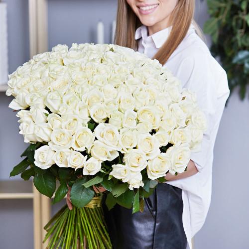 Букет из 101 белой розы Эквадор (Premium 60см)