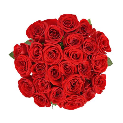 Букет из 25 роз (Premium 60см)