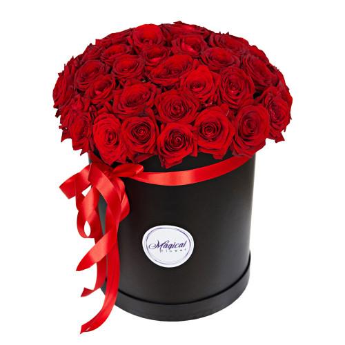 Шляпная коробка с букетом из 51 розы Эквадор (Premium)